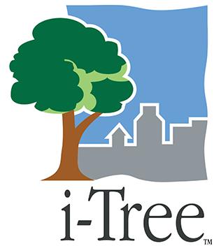 logo-i-Tree